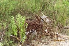 Restos de ferros abandonados (1)