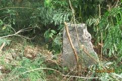 Ruína que restou do muro de d. Denise na rua Jilles Villeneuv (1)