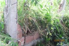 Ruínas de casa na rua Beira Rio (4)